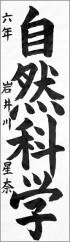 秋田県南地区書道展 秋田県南地区連合会会長賞 岩井川星奈