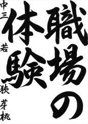 中三 若狭芽桃
